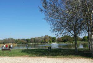 Parco di Tor di quinto